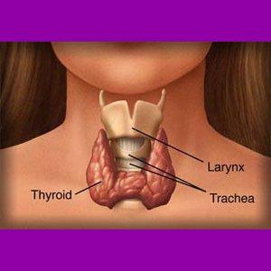 Dr Della Parker_Understanding Subclinical Hypothyroidism