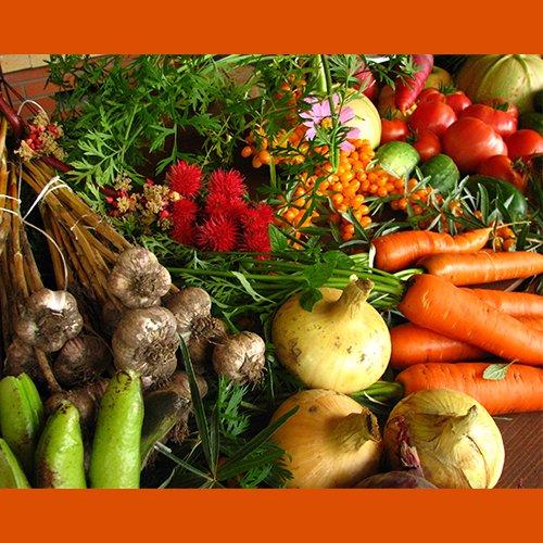 dr_della_parker_health_benefits_fiber
